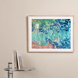 Mounted & Framed Prints